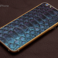 0002-modding-iphone-6-piton